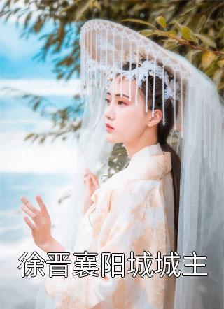 徐晋襄阳城城主小说
